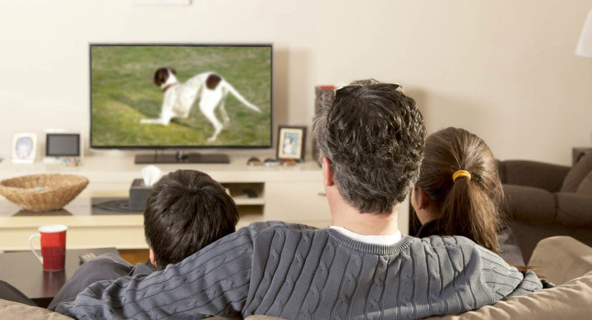 Research Shows Screen Size, Picture Quality Drives Replacement TV Purchases