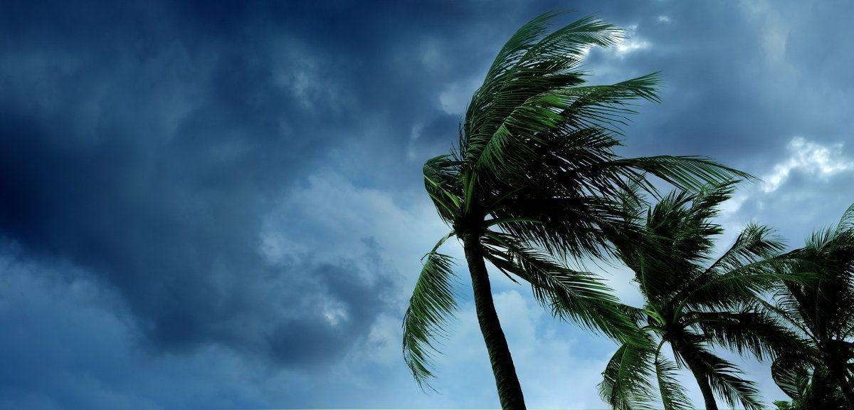 How to Handle Hurricane Season