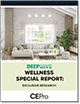 2020 Wellness Deep Dive Cover