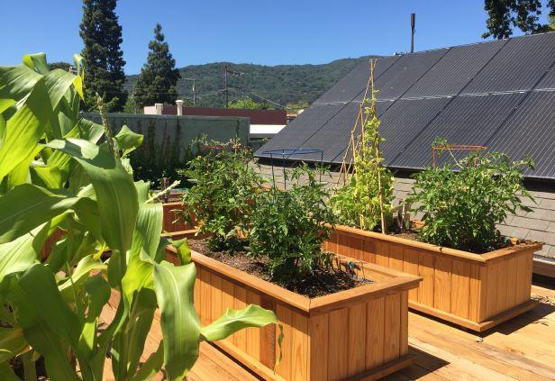cyberManor New Home Technology Center solar garden