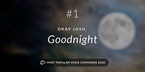 Top 10 Voice Commands of 2020
