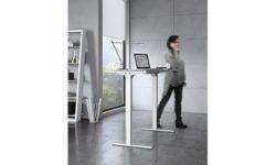BDI Lift Standing Desks