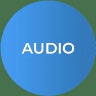 Savant Hub Audio Icon