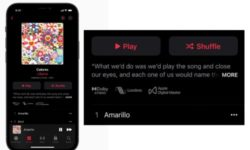 Apple Music Lossless Dolby Atmos Spatial Immersive