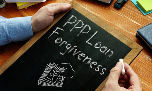 US Government Launches Payment Protection Program Forgiveness Portal